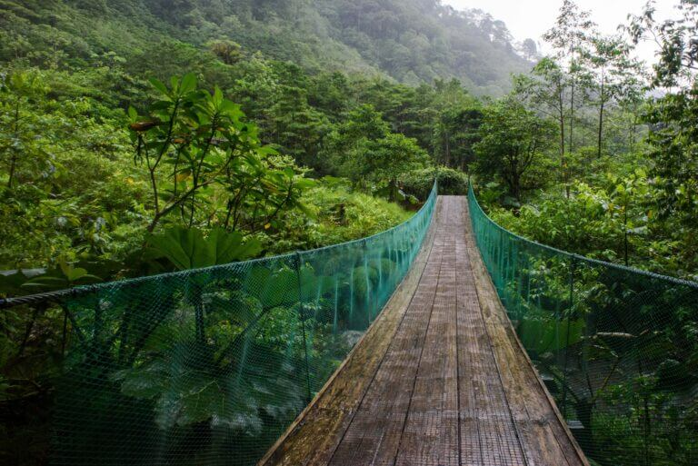 Wood suspension bridge Costa Rican jungle 10 Must Visit Budget Travel Destinations 2021 Chubby Diaries