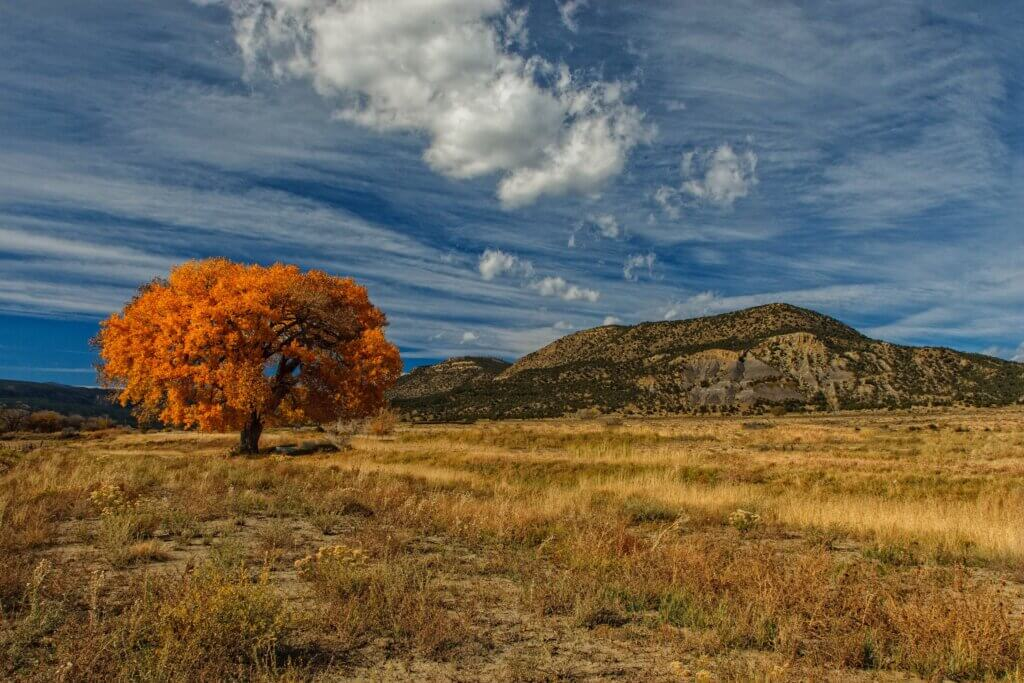 Dennis Buchner Taos, New Mexico 5 Best Fall Vacation Spots