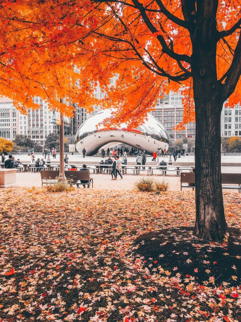 Ozzie Stern Chicago, Illinois 5 Best Fall Vacation Spots Chubby Diaries