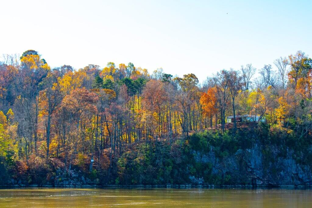 Robin Canfield Knoxville, Tennessee 5 Best Fall Vacation Spots Chubby Diaries